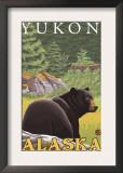 Black Bear in Forest, Yukon, Alaska Prints
