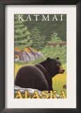 Black Bear in Forest, Katmai, Alaska Poster