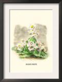 Marguerite Print by J.J. Grandville