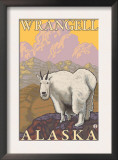 Mountain Goat, Wrangell, Alaska Prints