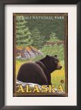 Black Bear in Forest, Denali National Park, Alaska Art