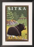 Black Bear in Forest, Sitka, Alaska Prints