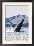 Humpback Whale, Sitka, Alaska Prints