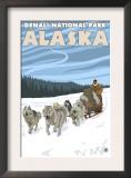 Dog Sledding Scene, Denali National Park, Alaska Print