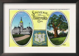 Hartford, Connecticut - a Souvenir of the City, View of Capitol Bldg and Oak Tree Print
