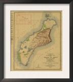 Hawaii - Panoramic Niihau Island Map Posters