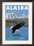 Bald Eagle, Alaska Posters