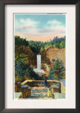 Ithaca, New York - View of Taughannock Falls No. 2 Posters