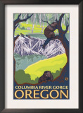 Beaver Family, Columbia River Gorge, Oregon Posters