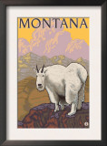 Mountain Goat, Montana Art