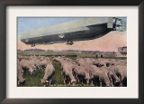Germany - View of a Zeppelin Blimp over Grazing Sheep Posters