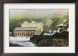 Electron, Washington - Exterior View of Electric Power Plant Prints
