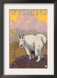 Mountain Goat, Wyoming Poster