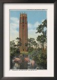 Lake Wales, FL - View of Singing Tower & Flamingos Art