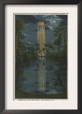 Lake Wales, FL - View of Mt. Lake & Singing Tower Prints