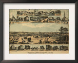 Willimantic, Connecticut - Panoramic Map Prints