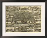 Reading, Pennsylvania - Panoramic Map Prints
