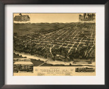 Tuscaloosa, Alabama - Panoramic Map Poster