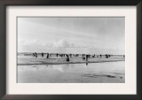 Digging for Razor Clams on Pacific Ocean Beaches Photograph - Washington Coast Poster