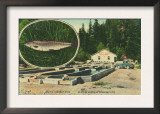 View of Trout Haven Hatchery - Gasquet, CA Prints