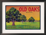 Old Oaks Pear Crate Label - Bryte, CA Poster