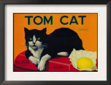 Tom Cat Lemon Label - Orosi, CA Prints