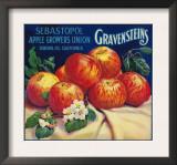 Sebastopol Gravensteins Apple Label - Sonoma, CA Print