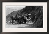 View of Stagecoach Cape Horn Near Chelan Canyon - Lake Chelan, WA Prints