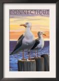 Connecticut - Sea Gulls Scene Prints