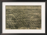 Anniston, Alabama - Panoramic Map Print