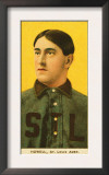 St. Louis, MO, St. Louis Browns, Harry Howell, Baseball Card Print