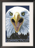 Connecticut - Eagle Up Close Prints