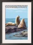 Connecticut - Sea Lions Scene Art