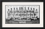 Brooklyn, NY, Brooklyn Dodgers, Team Photograph, Baseball Card Print