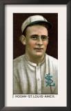 St. Louis, MO, St. Louis Browns, William Hogan, Baseball Card Prints