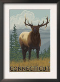 Connecticut - Elk Scene Prints