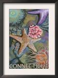 Connecticut - Tidepool Scene Prints