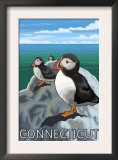 Connecticut - Puffins Scene Art