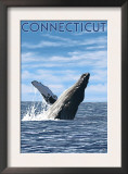 Connecticut - Humpback Whale Scene Prints