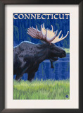 Connecticut - Moose in the Moonlight Posters