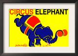 Circus Elephant Prints