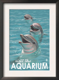 Visit the Aquarium, Dolphins Scene Posters