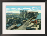 Newport News, Virginia, View of the C. and O. Railroad Company's New Pier, no.9 Print
