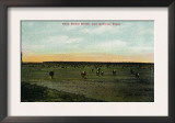 Texas, View of the Butler Ranch near Lubbock Poster