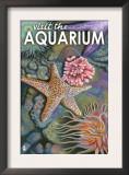 Visit the Aquarium, Tidepool Scene Prints