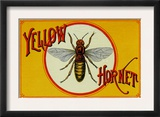 Yellow Hornet Brand Cigar Box Label Prints