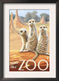Visit the Zoo, Meerkats Scene Prints