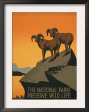 National Parks Art by J. Hirt