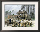 Turpentine Distillery in North Carolina, c.1870 Prints