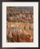 Hoodoo Sandstone Structures, Bryce Canyon National Park, Utah, USA Posters by Pete Cairns